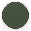 PanPastel Ultra Soft Artists' Painting Pastel Chromium Oxide Green Extra Dark