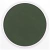 PanPastel Ultra Soft Artists' Painting Pastel Chromium Oxide Green Extra Dark