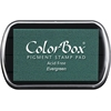 ColorBox Full Size Ink Pad Evergreen
