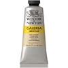 Winsor & Newton Galeria Acrylic Color 60ml Buff Titanium