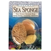 Natural Sea Sponge Variety Pack