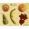 Edushape Large Knob Puzzle - Fruits
