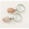 "Appealing Brass Shell Magnify 2 Assorted 3""W, 7""H"