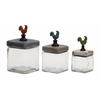 Benzara Too Cute Glass Wood Canister Set Of 3