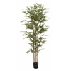 "Useful Polyethylene Potted Bamboo Tree 38""W, 77""H"