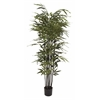 "Natural Polyethylene Potted Bk Bamboo Tree 27""W, 70""H"