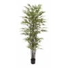 "Appealing Polyethylene Potted Bk Bamboo Tree 38""W, 80""H"