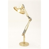 Modish Brass Spotlight Lamp, Brass