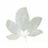 Benzara Beautiful And Gorgeous Decorative Stainless Steel Leaf Wall Decor