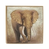 Appealing Elephant Framed Canvas Art, Multicolor