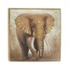 Appealing Elephant Framed Canvas Art, Multicolor