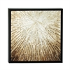 Enthralling Framed Canvas Art, Black & Beige