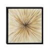 Amazing Framed Canvas Art, Black & Beige