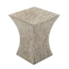 Astonishing Wood Shell Inlay Accent Table, Natural Wood