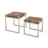 Benzara Fancy Stainless Steel Teak Nest Table Set Of 2