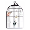 Benzara Unique Photo Holder As A Charming Bird Cage