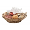 "Alluring Sea Shell Bowl 8""W, 4""H"