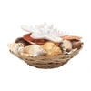 "Benzara Enthralling Sea Shell Bowl 6""W, 3""H"