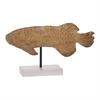 Captivating Ps Fish Sculpture, Natural Wood, Black