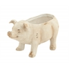Benzara Adorable Mgo Pig Flower Pot, Cream