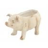 Adorable Mgo Pig Flower Pot, Cream