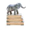 """Polystone Book W Elephant 8""""W, 10""""H, Gray"""