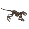 "Metal Dino Skeleton 21""W, 10""H, Silver"