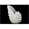 Ceramic Shell Flower Pot - White