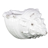 Ceramic Conch Large Shell Distressed Gloss White