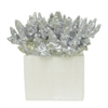 "Benzara 37579 9"" decorative Coral, Silver"