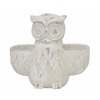 Benzara Magnificent Cement Owl Planter - 1 Plant