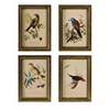 Enthralling Wooden Bird Plaques - Set of 4