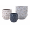 Set of 3 Exclusive Starfish Earthenware Planters