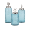 Aubrey Lidded Glass Canisters, Blue and silver, Set Of 3