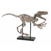 Marvelous Borsari Prehistoric Dinosaur