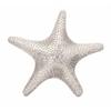 Dempsey Aluminum Starfish Wall Mount