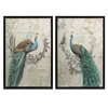 Set of 2 Attractive Panache Peacock Art
