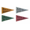 Glamorous Happy Pennants ? Assorted 4, Multicolor