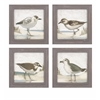 Mesmerizing Sea Bird Wall Decor - Assorted 4, Multicolor