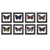 Arty Butterfly Framed Glass Wall Decor ? Assorted 8, Multicolored