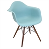 Neo Flair Mid-Century Modern Chairs in Sea Green and Espresso, Set of 2