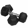 Valor Fitness 20 lb Rubber Hex Dumbbell (2)