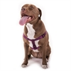 15in -25in Step In Harness Burgundy, Lrg 40 - 120 lbs Dog By Pet Products