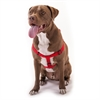 15in -25in Step In Harness Red , Lrg 40 - 120 lbs Dog By Pet Products