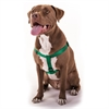Majestic 15in -25in Step In Harness Green,  Lrg 40 - 120 lbs Dog By Majestic Pet Products