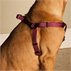 9in - 15in Step In Harness Burgundy, Sml 10 - 45 lbs Dog By Pet Products