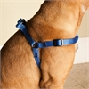 9in - 15in Step In Harness Blue, Sml 10 - 45 lbs Dog By Pet Products