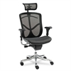 Alera Alera EQ Series Ergonomic Multifunction High-Back Mesh Chair, Aluminum Base