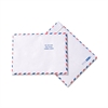 SURVIVOR Tyvek USPS Air Mail Mailer, Side Seam, 10 x 13, White, 100/Box
