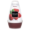 Renuzit Adjustables Air Freshener, Raspberry Scent, Solid, 7 oz